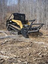 ASV PT-100 Forestry Compact Track Loader
