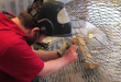 Dutch Company Plans to 3D-Print Bridge (Video)